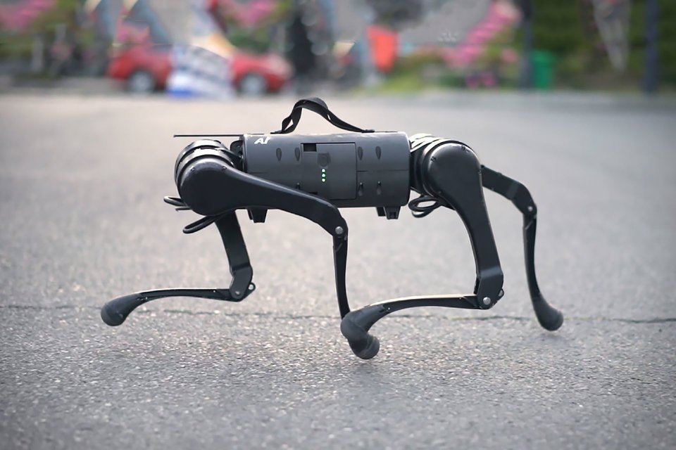 They Got Unitree A.I. Robot Dogs Out Here